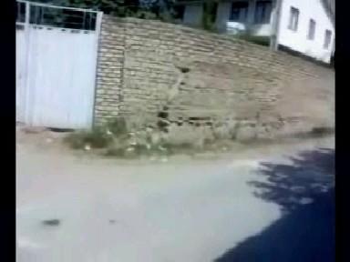 دیوار سید ابوالفضل موسوی