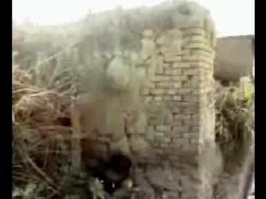 دیوار حاج ابراهیم طوسی